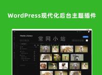 WP Admin2020 v2.0.3简洁WordPress现代仪表板主题插件