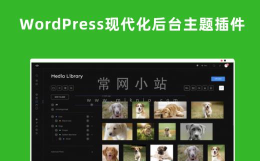 WP Admin2020 v.1.3.2简洁现代化的WordPress管理面板主题插件
